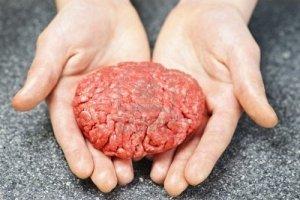 Bientôt un hamburger fait avec des cellules souches